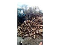 Firewood, wood burner log fire Seasoned Oak Ash hardwood logs