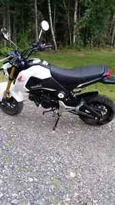 Only 2000 km Honda Grom 125 cc purchased new May 2016 Prince George British Columbia image 4