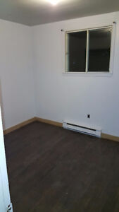 Newly Renovated 2 Bedroom for rent in Dartmouth