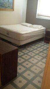 Quiet single room avail immed close to c train