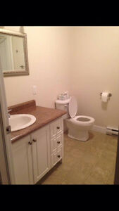One bedroom apartment in paradise St. John's Newfoundland image 5