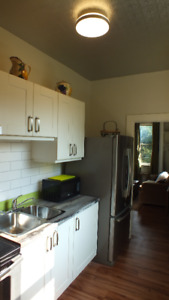 Furnished Luxury 1 bedroom apartment +hydro  FOR ONE PERSON ONLY