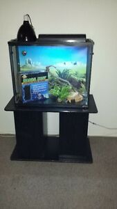 Reptile Tank and Stand Stratford Kitchener Area image 1