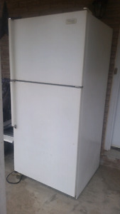 Free old fridge - beer fridge?