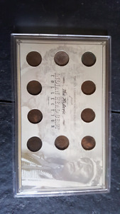 Indian Head U.S. Cent Coin Collection