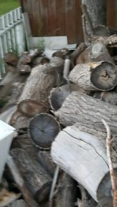 Firewood free