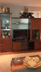 Entertainment Unit/Display Cabinet Kitchener / Waterloo Kitchener Area image 5