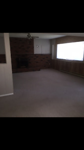 Extra Large 1 bedroom above ground suite for rent ASAP June 1
