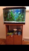 Fish, fish tank, stand, and accessories!