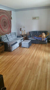 Seeking Female roommate to Share My Home