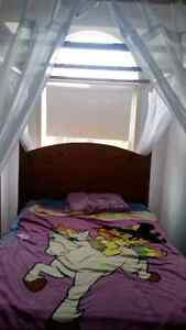BEAUTIFUL CANOPY BED PERFECT FOR LITTLE GIRL OR BIG GIRL