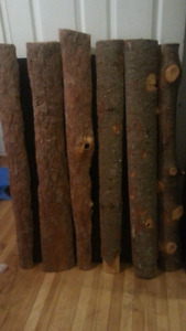 Natural logs wood dry and ready for your creative ideas....