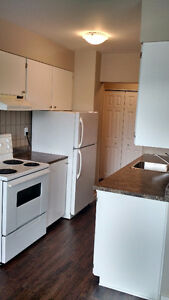 Newly Renovated 3 Bedroom Suite
