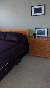 Shared Accommodations. Home away from Home