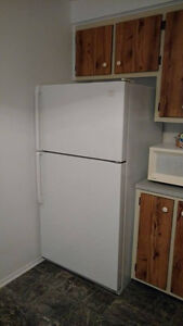 Fridge ,Stove , Washer and Dryer  (Selling complete $400.00 )