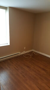 Cozy Two Bedroom Apartment on Greenspond Drive in Cowan Heights St. John's Newfoundland image 8