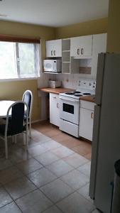 2 Bedroom Walkout Basement rental Suite