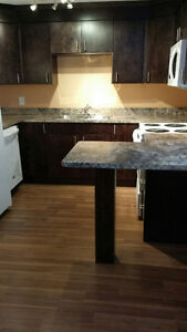 New and Nice 2 bedroom for rent available December 1st Regina Regina Area image 8
