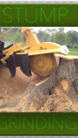 Stump grinding services/stump grinder