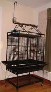 Large Parrot Cage with Playtop