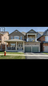 Yonge Gamble 4 BR detached house rent Now