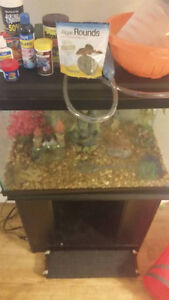 FISH TANK AND ACCESSORIES MUST GO ASAP 130$ O.N.O