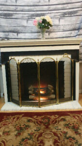Fireplace Mantle with insert