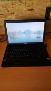 Toshiba laptop 350$ works great dont use it