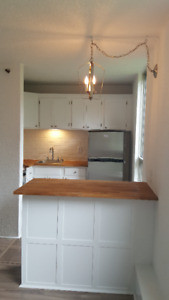Brand new renos on large bach in South End. Great location
