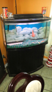 46 gallons bow front  aquarium for sale with all accessories