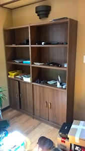Bookcase with bottom doors ($20)