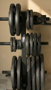 Rubber coated plate weights