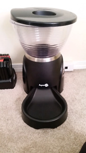 Aspen pet feeder for sale