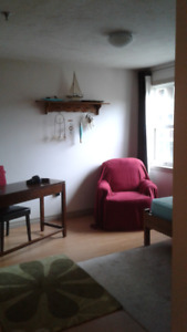 1 Bedroom Apartment on South Street for Sublet