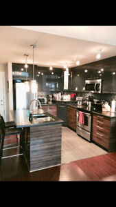 Furnished Luxury 1 bedroom and den available Feb 1st!