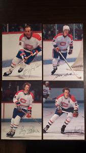 Collection de carte de hockey Steinburg