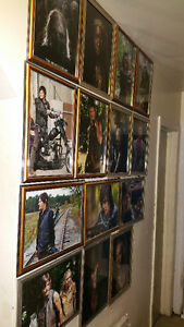 the walking dead framed pictures 60 all together