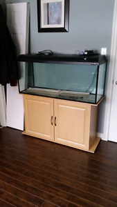 55 gallon tank and stand.. exellent condition