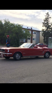 1966 Mustang Been in family since new. 3 speed straight 6