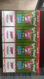 Winnipeg goldeyes tickets