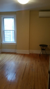 Spacious Two Level House Apartment South Annex