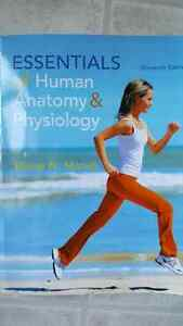 Essentials of Human Anatomy &Physiology