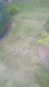 Cheap and easy Sod installation starting at $1 a sqft