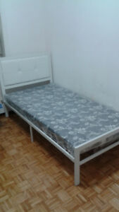 Shared Accommodation near humber college and york uni