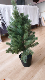 Artificial potted in/outdoor Christmas Tree Green 50cm