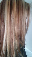 Special offer for Highlight,  color , cut