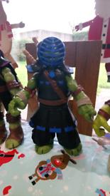 Teenage Mutant Ninja Turtle Dojo Collection