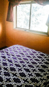 Room for rent pay only  $400 for December and January Edmonton Edmonton Area image 2