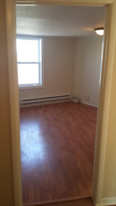 Bright 2 bedroom apartment in Georgetown