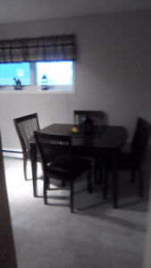 2 Bedroom Basement Apartment for Rent